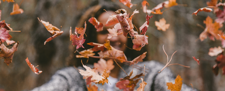 menu automne
